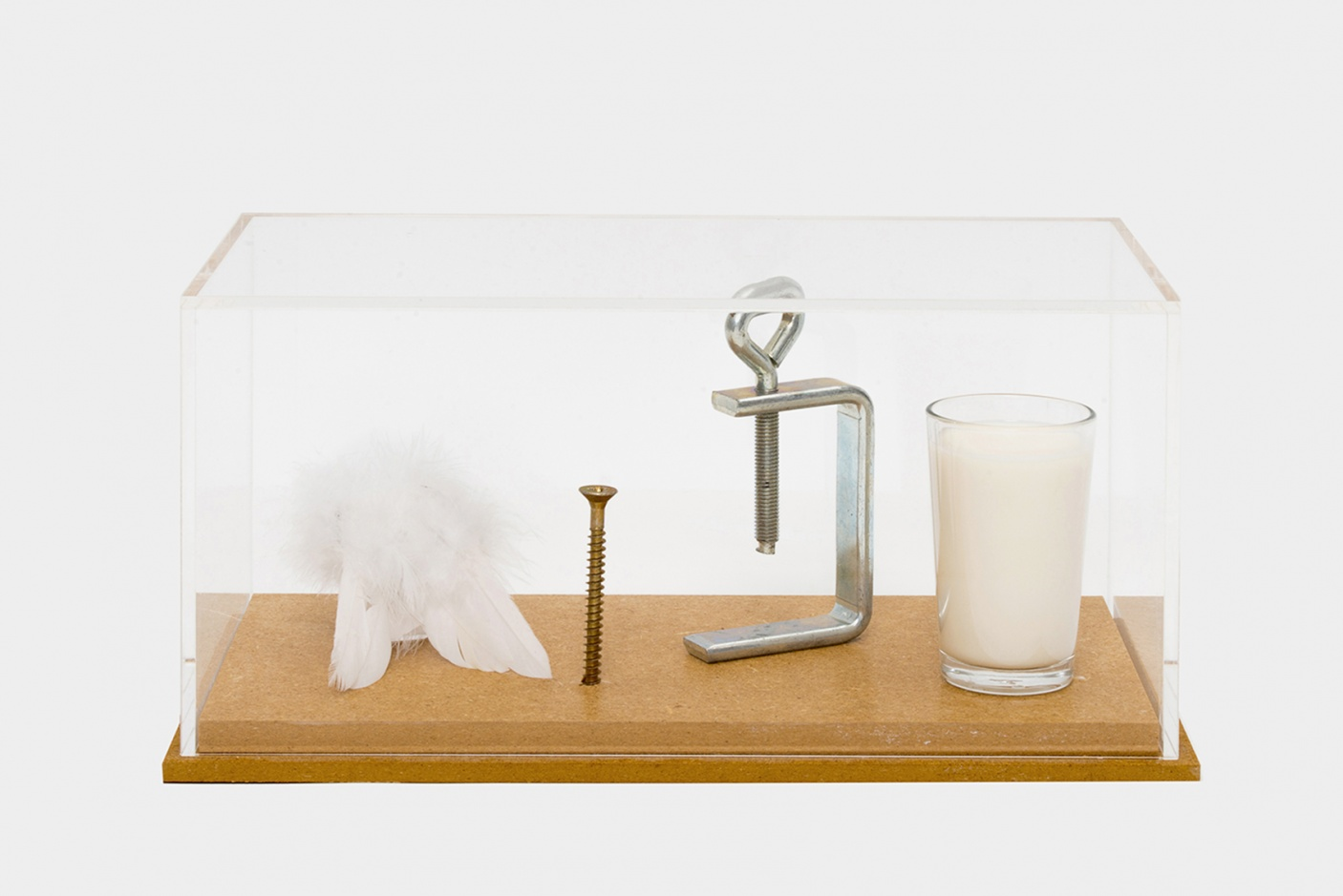 Rébus Romain Denis : aile-vis-presse-lait